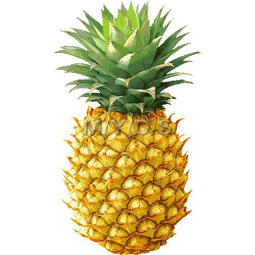 Pineapple Grows u0026middot; Pineapple Ranch u0026middot; Clip Pineapple u0026middot; Pineapple Clipart