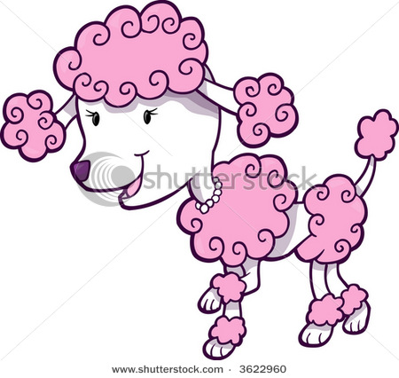 Pink Colored Poodle With A ..