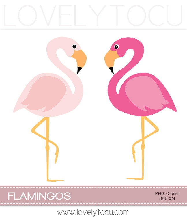 Pink flamingo clipart, a pair of pink bi-Pink flamingo clipart, a pair of pink birds digital PNG clip art (30)-11