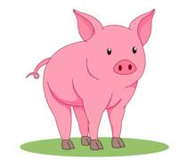 Pink Pig Clipart Size: 59 Kb