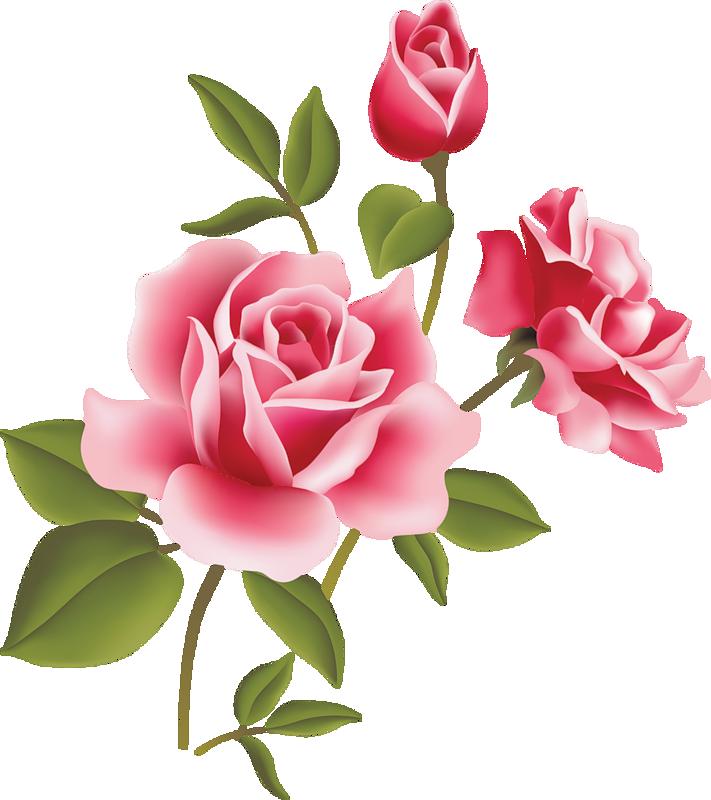 Pink Rose Clip Art