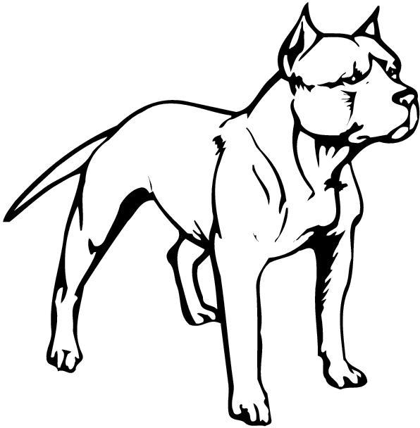 Pit Bull Clipart Cliparts Co. 2016/03/10 Pitbull u0026middot; Website Designed At Homestead Get A Website And List Your Business
