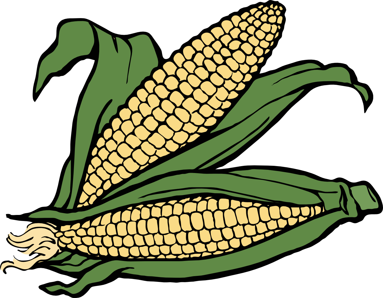 Pix For Fall Corn Clipart - Indian Corn Clipart