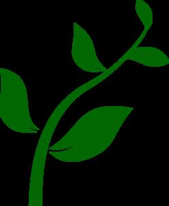 Plant Clipart-plant clipart-6