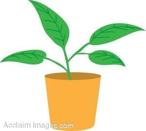 Plant Clipart-Plant Clipart-8
