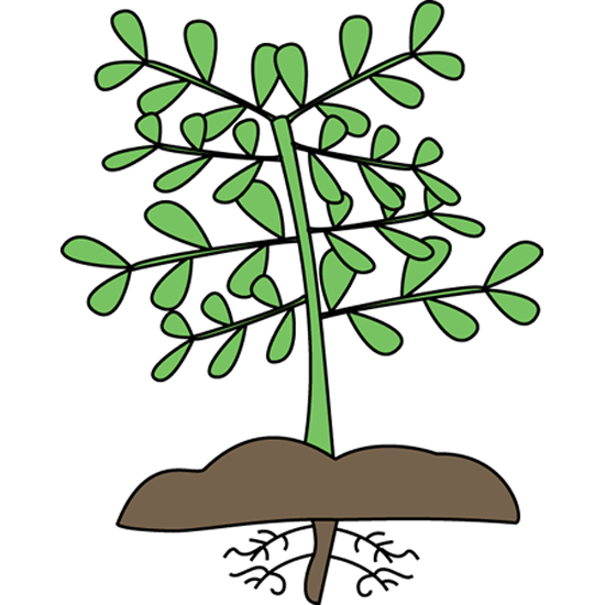 Mockingbird Nursery Site Icon