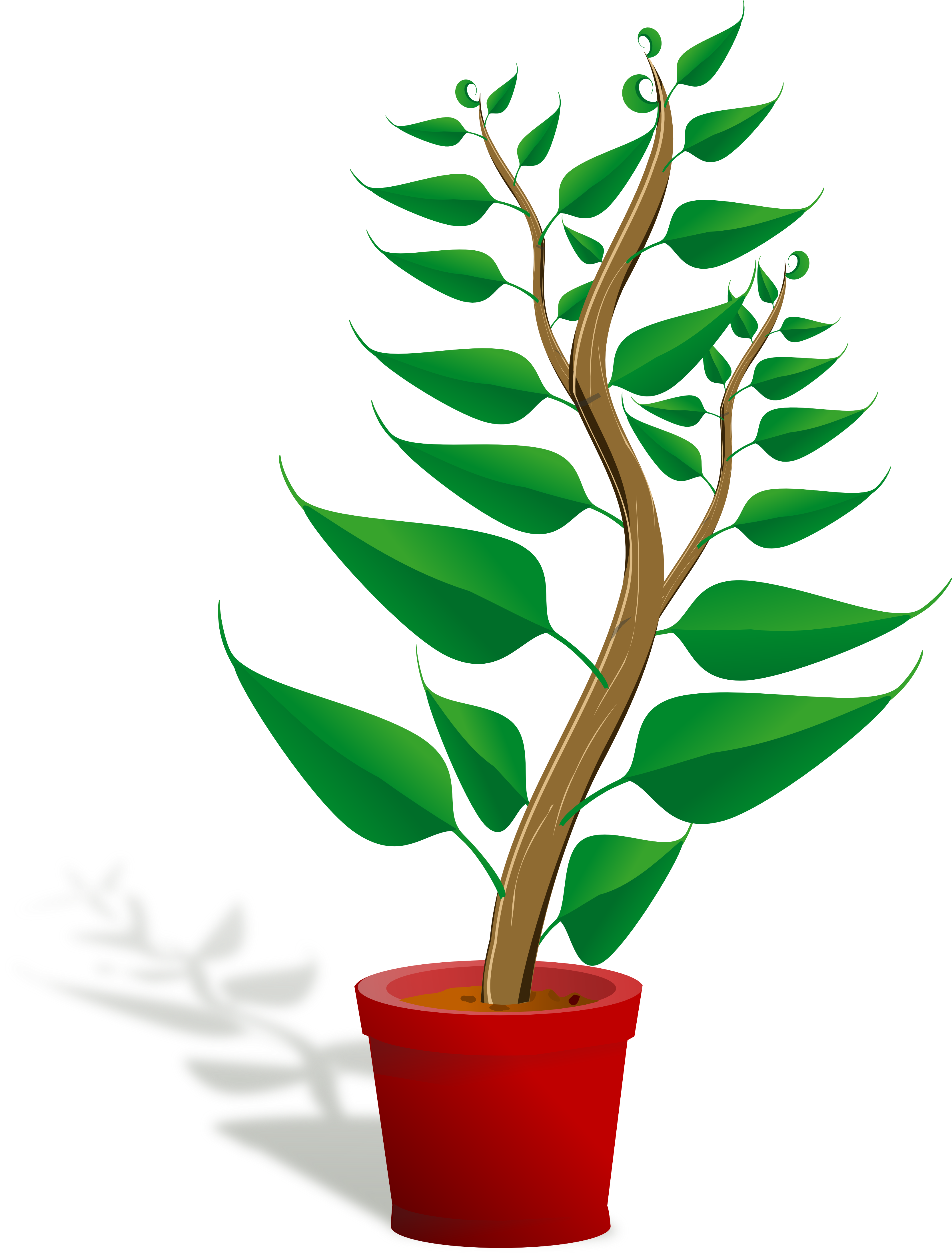 Plant Clipart-plant clipart-10