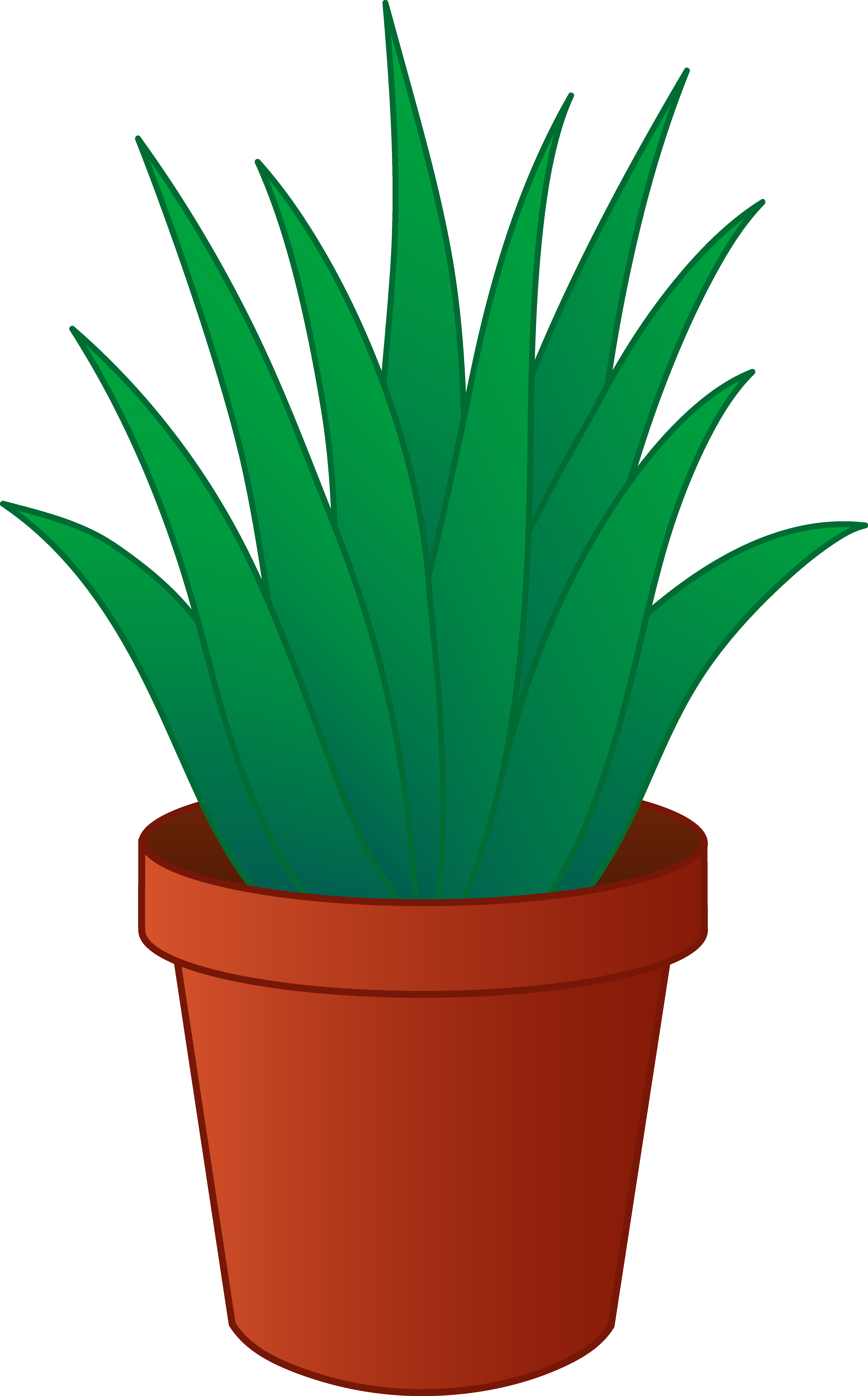 Plant Clipart-plant clipart-11