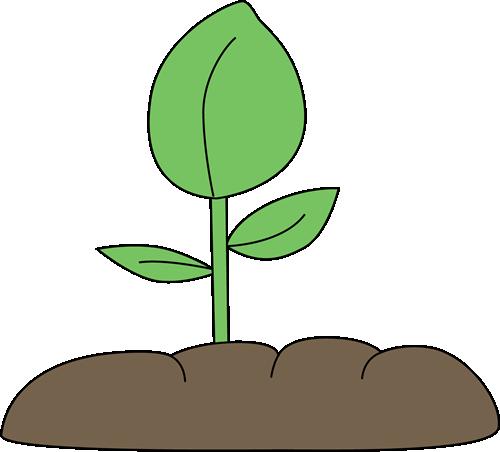 Plant Clipart-Plant Clipart-12