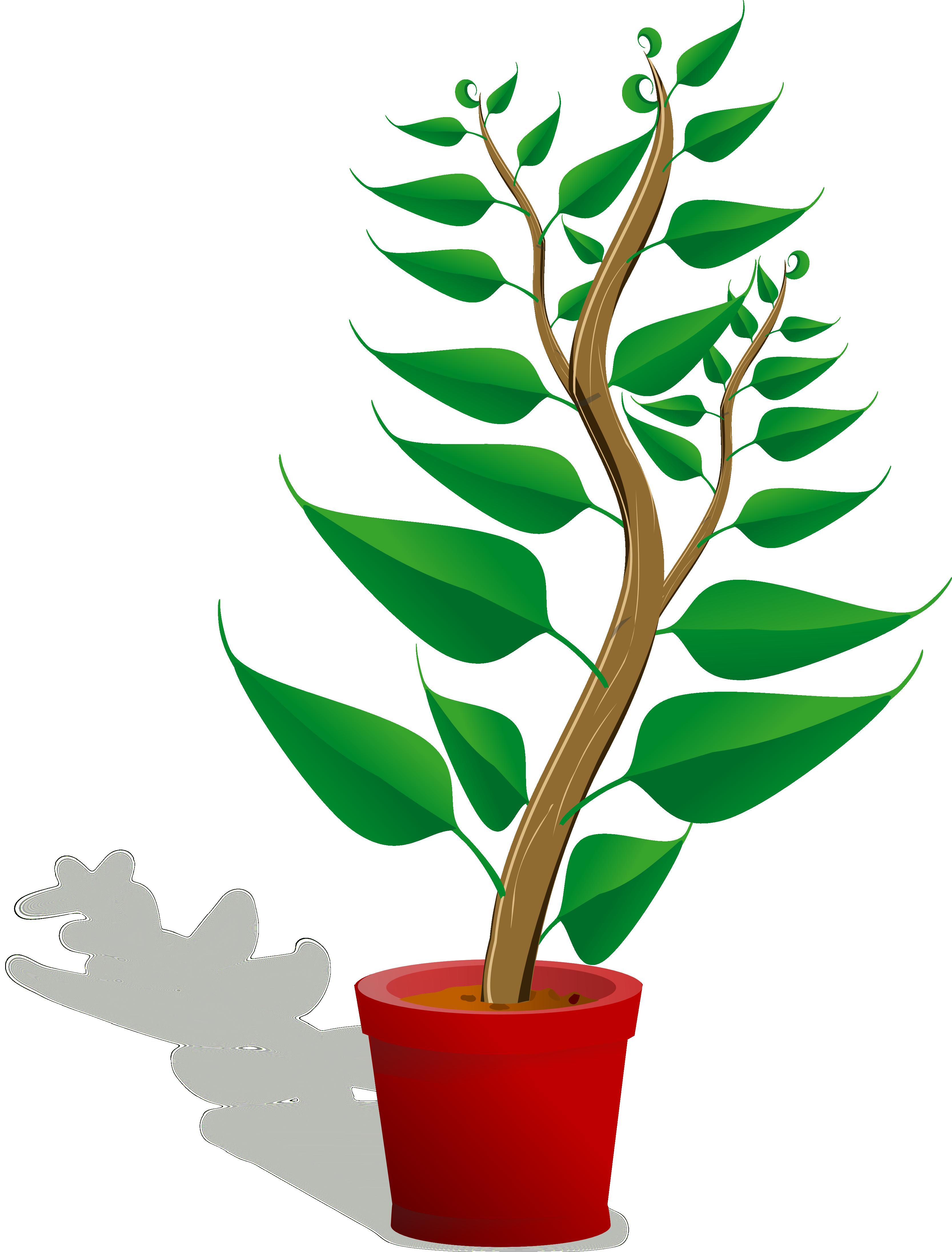 plant clipart-plant clipart-4