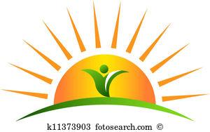 Plant In Sunrise-Plant in sunrise-3