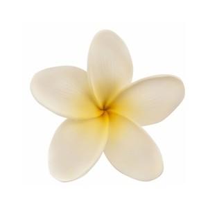 Plumeria Clip Art Clipart Best. 3 inch Plumeria Hawaiian .