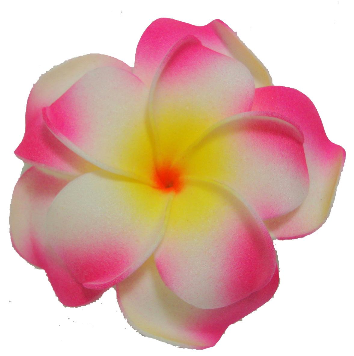 ... Plumeria Clip Art - clipartall ...-... Plumeria Clip Art - clipartall ...-15