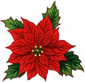 Poinsettia Clip Art Free. Christmas Clipart Graphics .