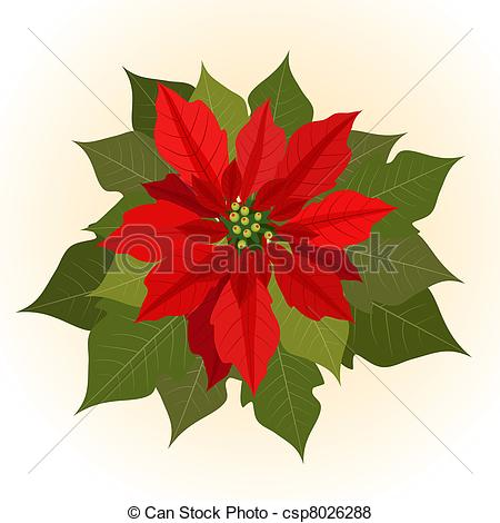 ... Poinsettia flowers for christmas