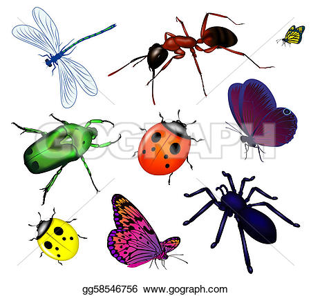 poison u0026middot; Set of various insec-poison u0026middot; Set of various insects-16