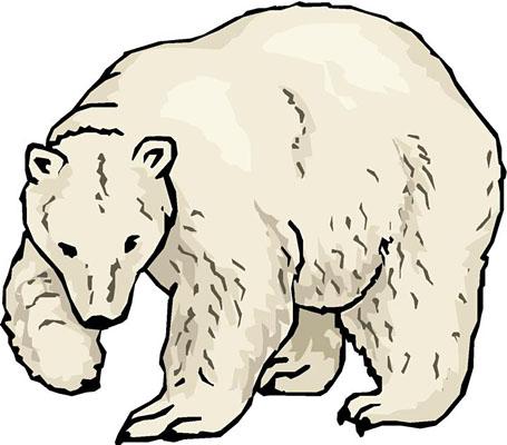 polar bear clipart black and white