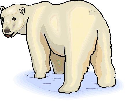 Polar bears clip art-Polar bears clip art-17