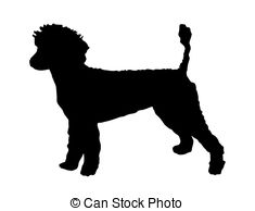 ... poodle silhouette vector