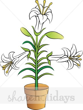 Potted Easter Lily Clipart