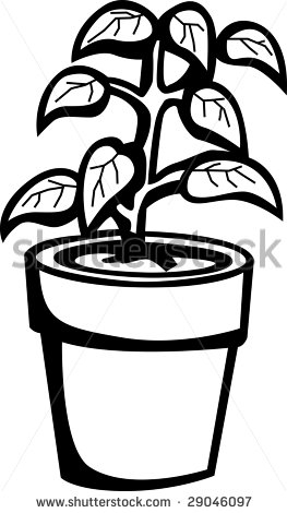 Potted Plants Black And White ... Potted-Potted Plants Black And White ... potted vegetable plant%-14