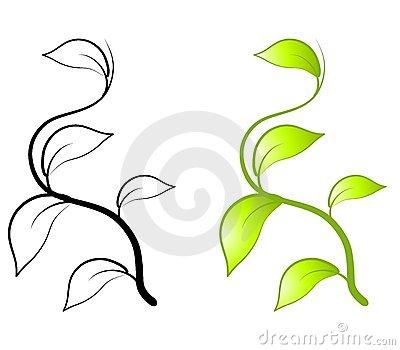 Pumpkin Vine Clip Art Vine ... Featuring Simple Green Leaf .