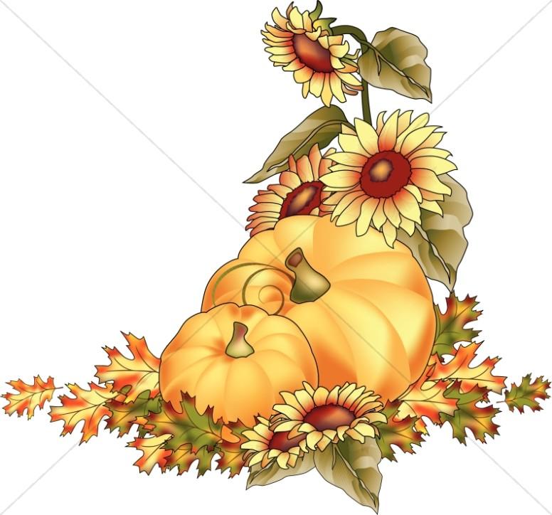 Pumpkins At Harvest Color Clipart