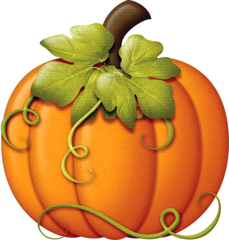 Pumpkins pumpkin clipart image