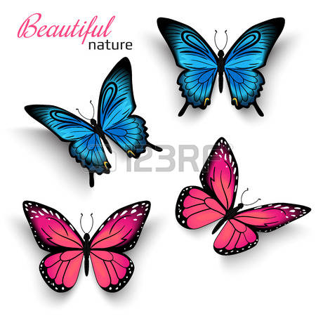Purple Butterfly: Beautiful Realistic Bu-purple butterfly: Beautiful realistic butterflies blue and red with shadows isolated on white Illustration-10