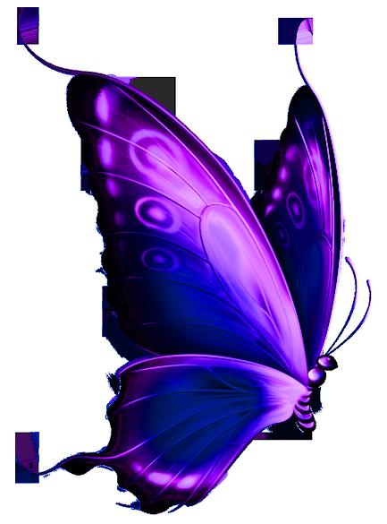 Purple Butterfly Clip Art-purple butterfly clip art-14