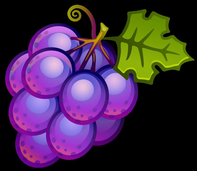 Purple Grapes Clipart Free Clipart Image-Purple Grapes Clipart Free Clipart Images-12