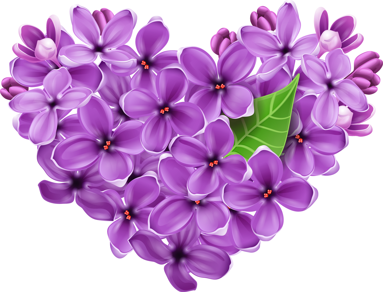 Purple Lilac Heart PNG Picture
