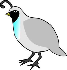 quail clipart black and white-quail clipart black and white-1