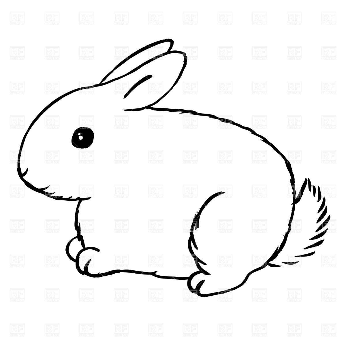 rabbit face clipart
