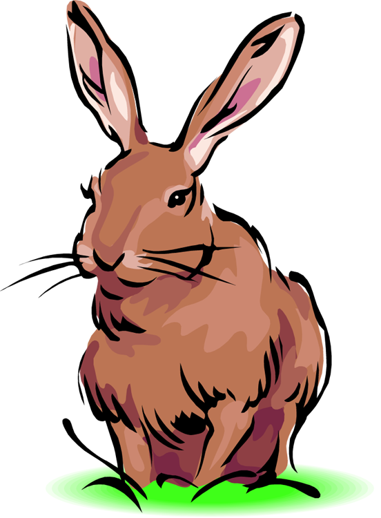 Rabbit Clipart Free Clipart .-Rabbit clipart free clipart .-18