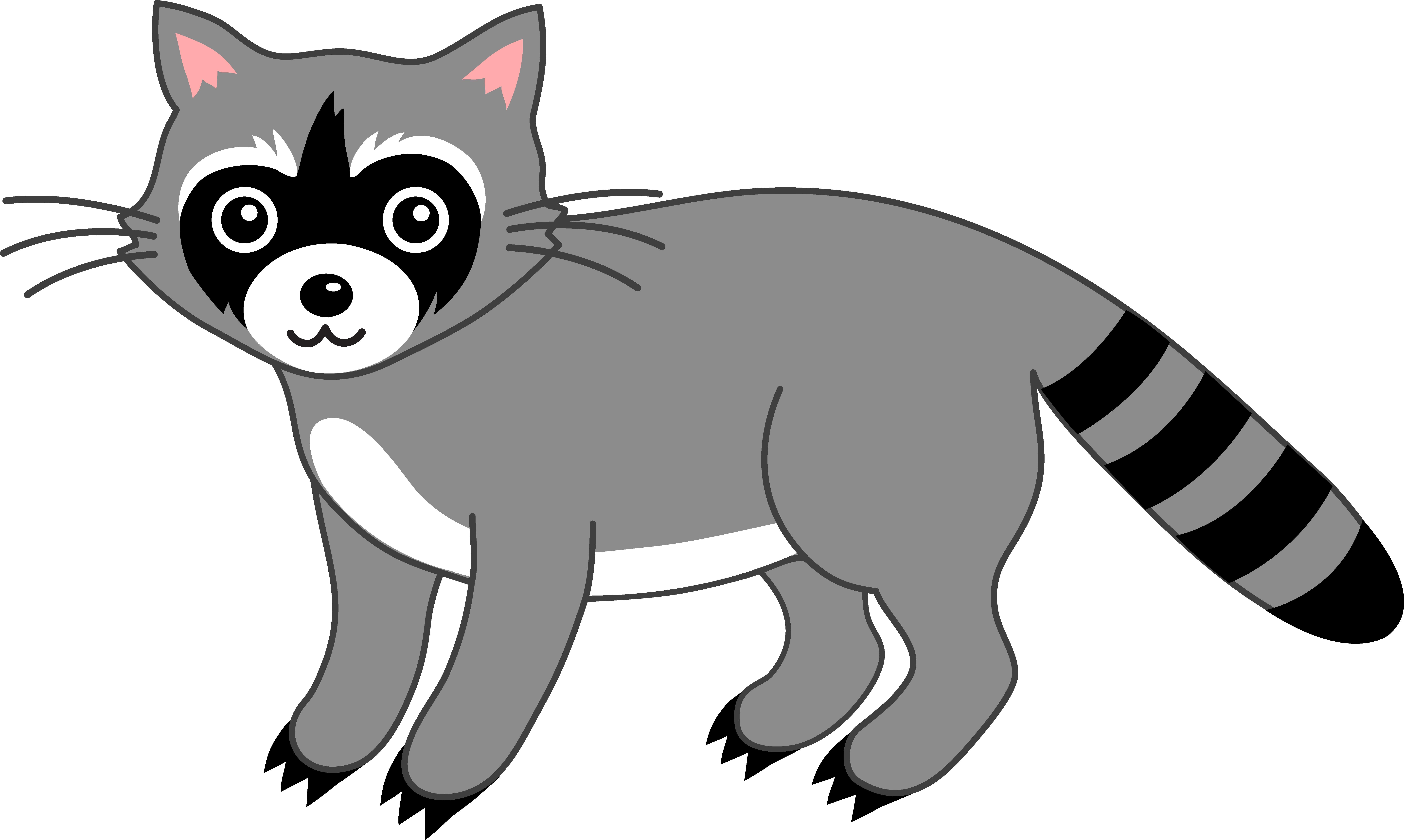 raccoon clipart -raccoon clipart -0