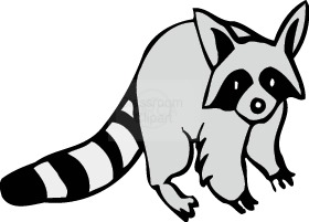 Raccoon Clip Art - Raccoon Clip Art