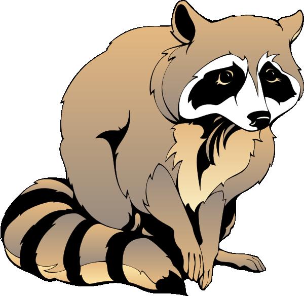 Raccoon Clipart - Raccoon Clip Art