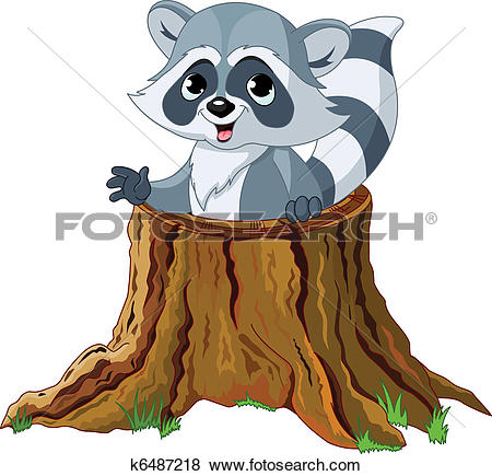 Raccoon in tree stump-Raccoon in tree stump-8