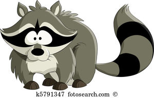 Raccoon-Raccoon-14