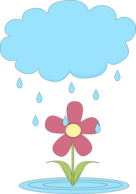 Rain Cloud Over A Flower-Rain Cloud Over a Flower-11