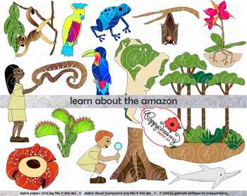 Rain Forest Products Clipart-Rain Forest Products Clipart-8