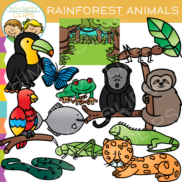 Rainforest Animal Clip Art-Rainforest Animal Clip Art-7