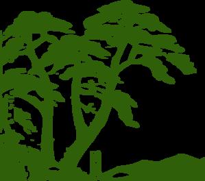 Rainforest Edit 3 Clip Art