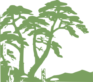 Rainforest Edit Clip Art-Rainforest Edit Clip Art-14