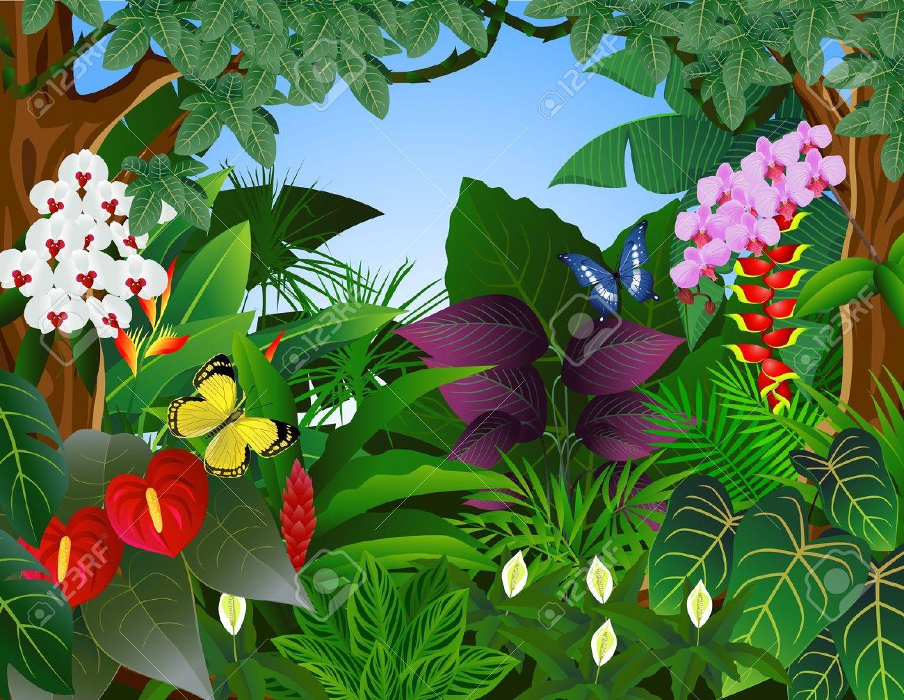 Rainforest Leaves Clipart Webnode-Rainforest leaves clipart webnode-7