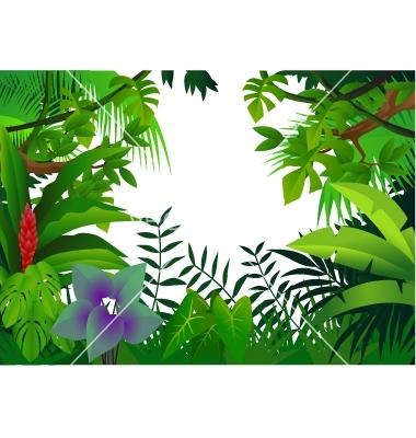 Rainforest Trees Clipart Clipart Panda Free Clipart Images