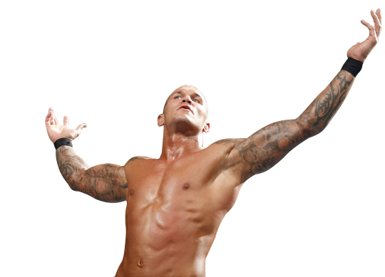 Randy Orton Picture PNG Image