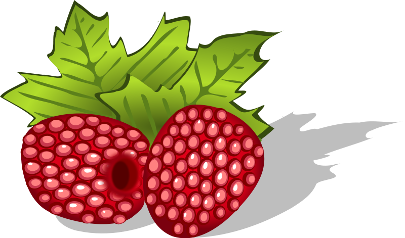 Raspberries Clipart