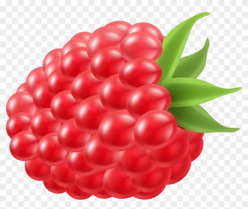 Berry Clipart Blue Raspberry - Clip Art Raspberry #530932
